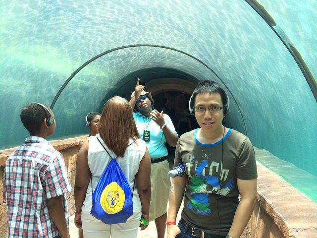Disney Druise Dream Discover Atlantis 11