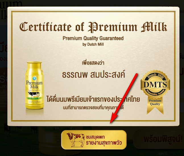 Dutch Mill Premium Milk Fullpage