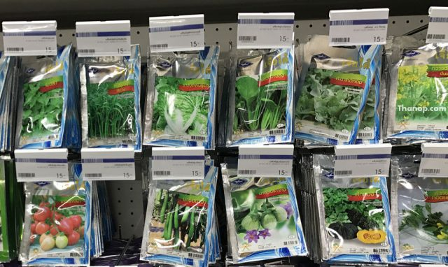 Hydroponic Vegetable Seed Package on Shelf