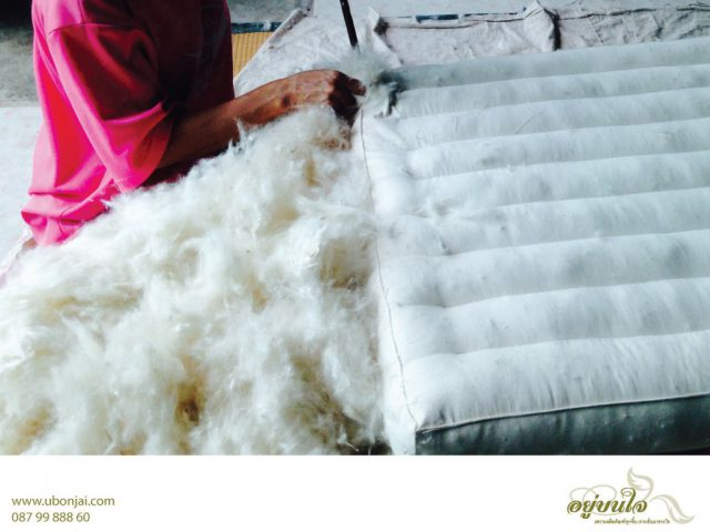 Mattredd and Bed Article Kapok Mattress Production