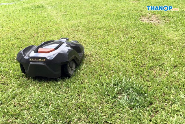 Robot Lawn Mower Working Daytime