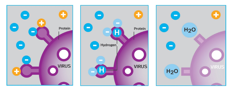 lightair-ionflow-technology-virus-desturction-steps
